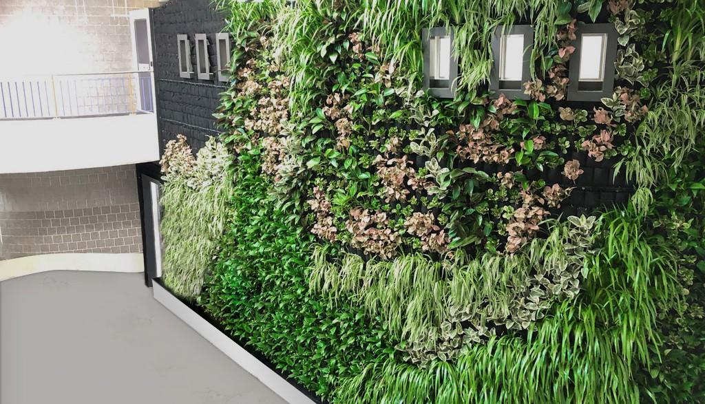 Indoorplantdesign